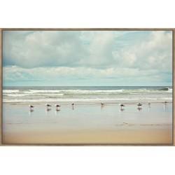Beachcombing - Canvas