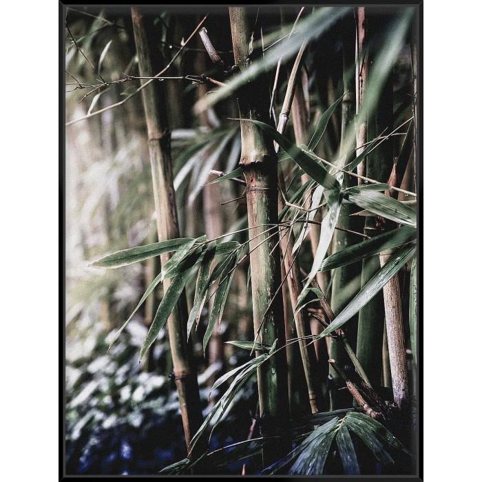 Leaf III - Canvas