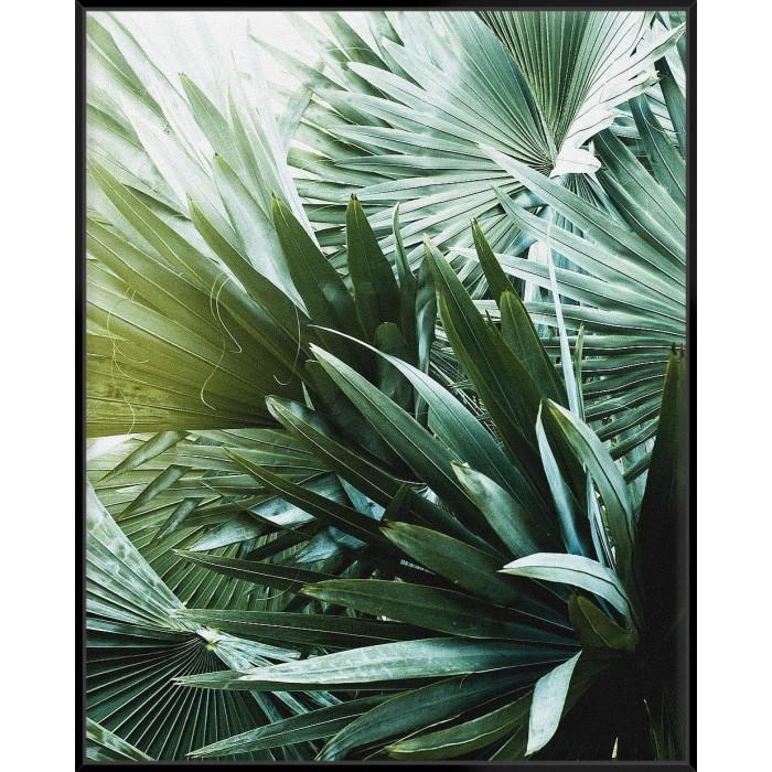 Leaf II - Canvas