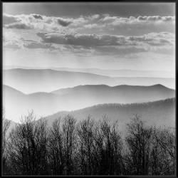 Misty Mountains - Canvas