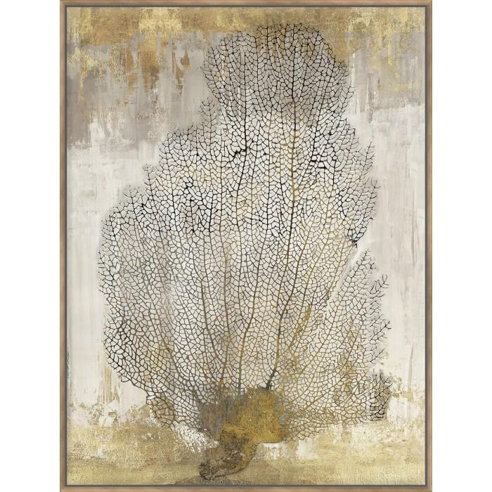 Coral Splendour II - Canvas