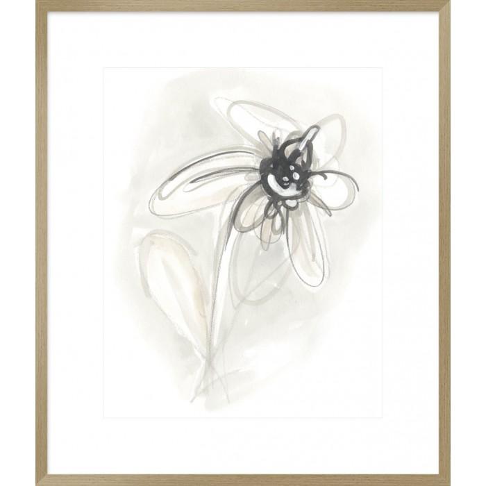 Neutral Floral Gesture V 74x64cm