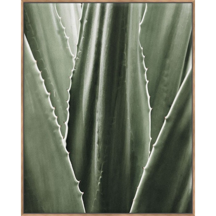 Leaf I - Canvas