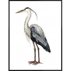 Sea Bird I - Canvas