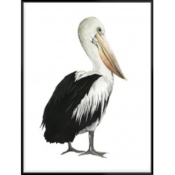 Sea Bird IV - Canvas