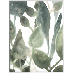 Water Leaves IV - Canvas