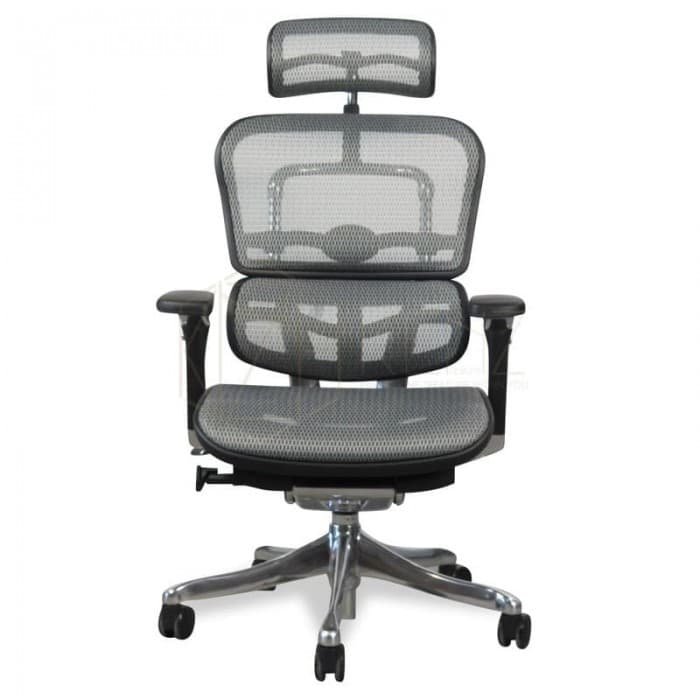 Ergohuman Plus Office Chair - V2 Deluxe - High Back - Black Frame...