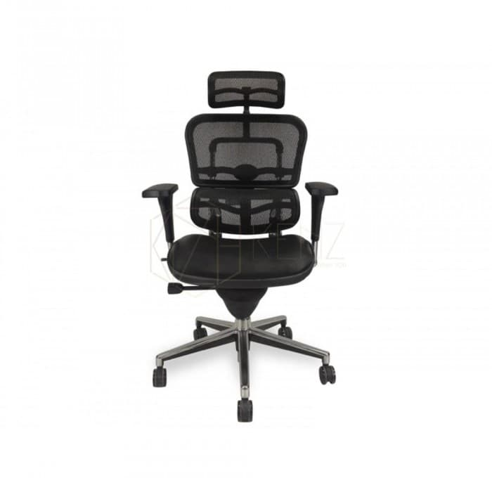 Ergohuman Standard Mesh Office Chair with Leather Seat - High Back...