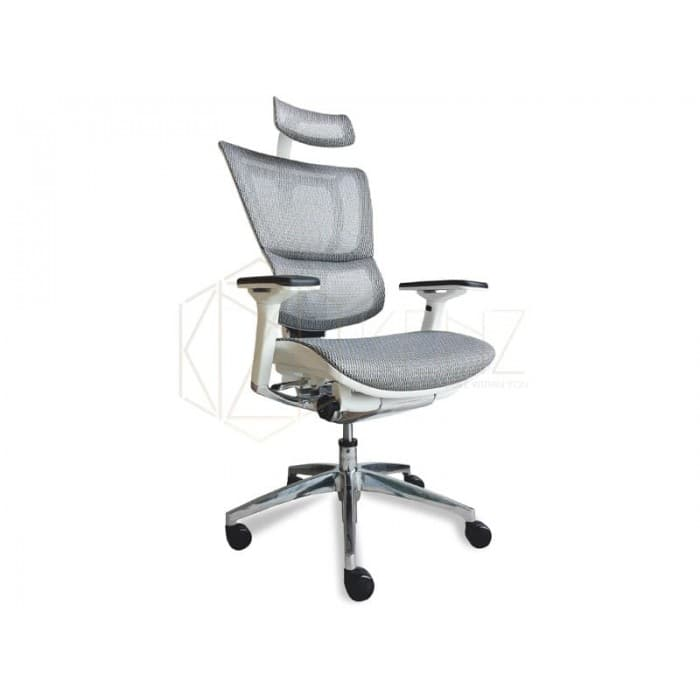 Furniture - Ergo Deluxe Plus - White Mesh
